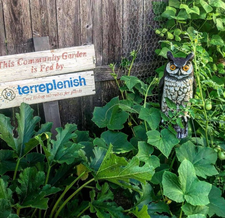 Terreplenish is a brand new method of farming that's meant to replace traditional farming. Learn more about it here.