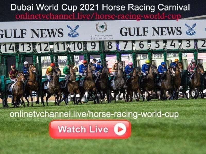 The Dubai World Cup is here to dazzle longtime fans. Discover how to watch the horse racing event on Reddit for free.