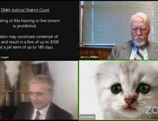 A funny cat pics Zoom filter sends this Texas courtroom trying to fix the issue. We dare you to try to keep as straight of a face as these legal pros.
