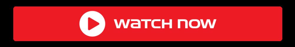 Daytona 500 2021 Live Stream Free Reddit Watch Online – Filmy One
