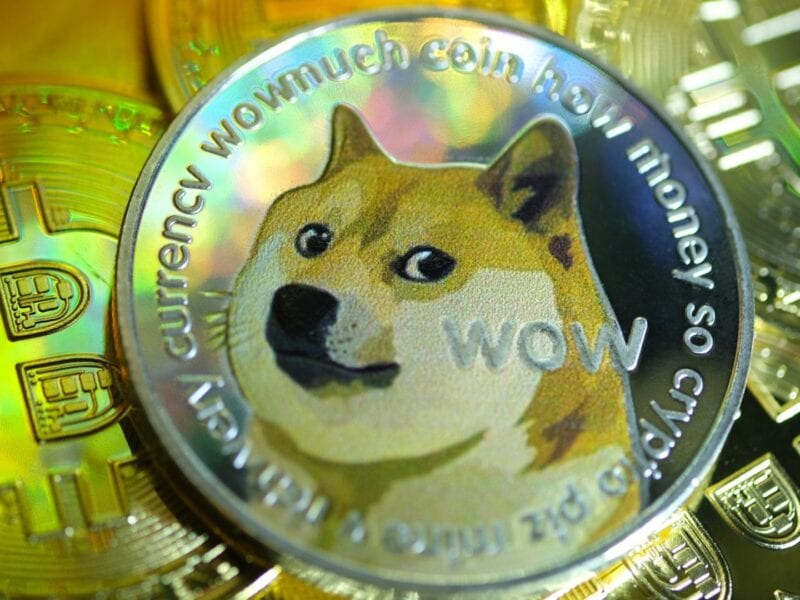 Elon Musk bought dogecoin for his son, sparking a 16% surge in a little over an hour. Check out the new price of meme cryptocurrency.