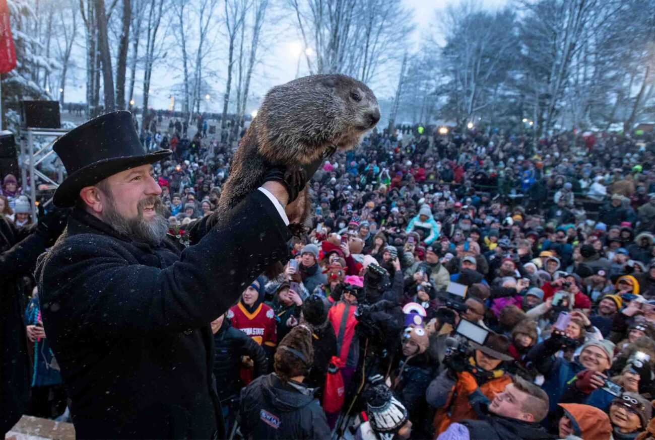 It's Groundhog day! In order to celebrate this funny holiday we've compiled the best Punxsutawney Phil memes.
