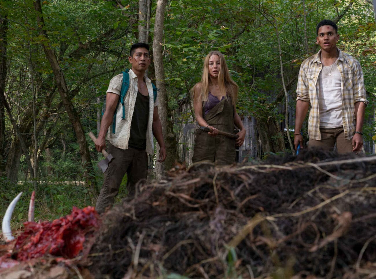 Stream Wrong Turn Tonight With One Of These Movie Sites Film Daily