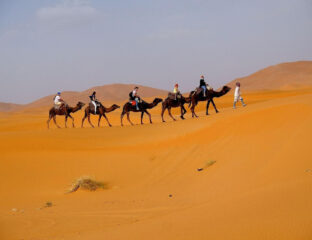Do you have the travel bug? Why not go to Morocco? Check out the ten must-see places in this diverse, beautiful country.