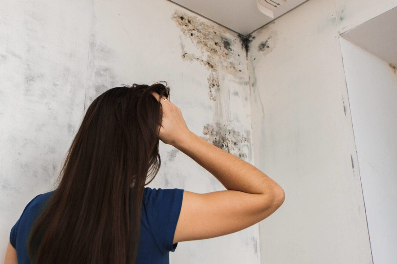 Did your house get hit with black mold? Don't wait another minute! Remove the mold and odor right away with these helpful tips.
