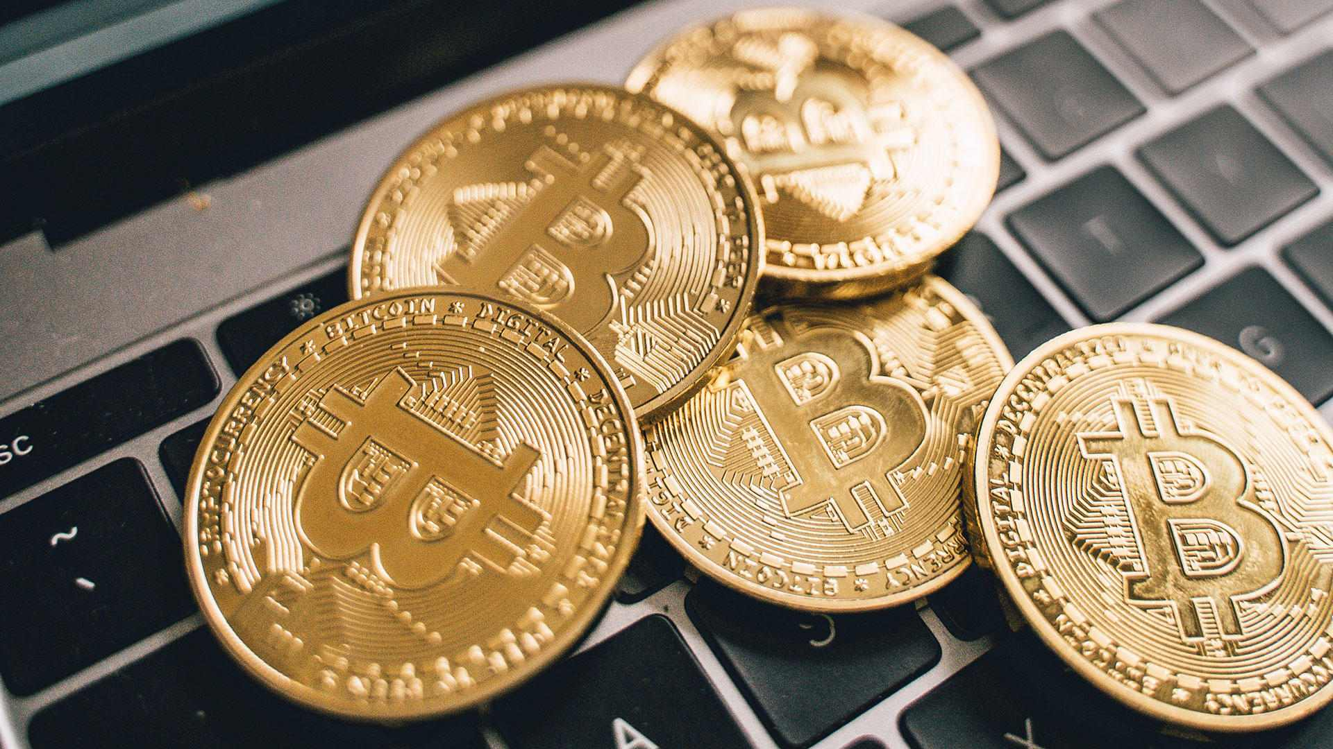 Bitcoin is considered to be the magnetic cryptocurrency. Find out what makes the cryptocurrency so popular with users.