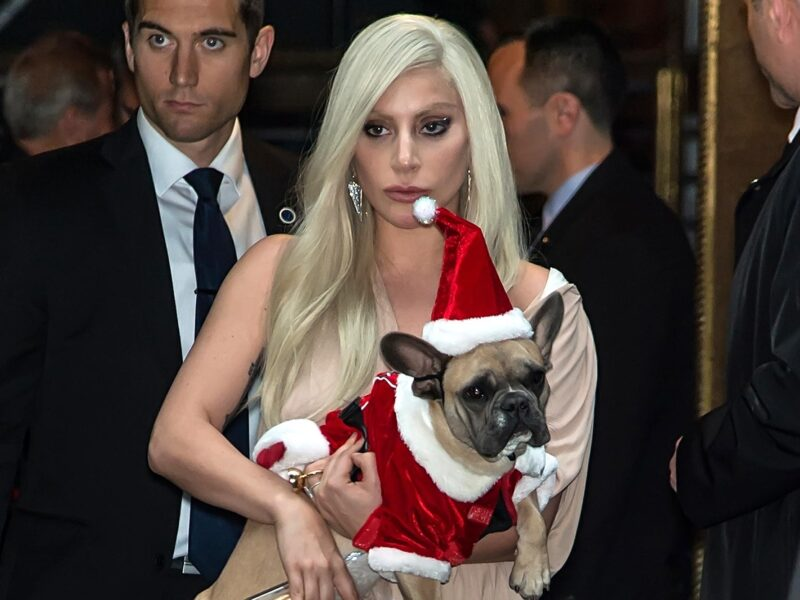 The dog walker of Lady Gaga is finally speaking out about his side of the story. Read all about the traumatic & frightening situation here.