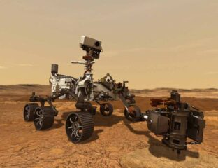 What's life on Mars like for NASA's rover Perseverance? See what the red giant looks like from the newest rover's perspective.