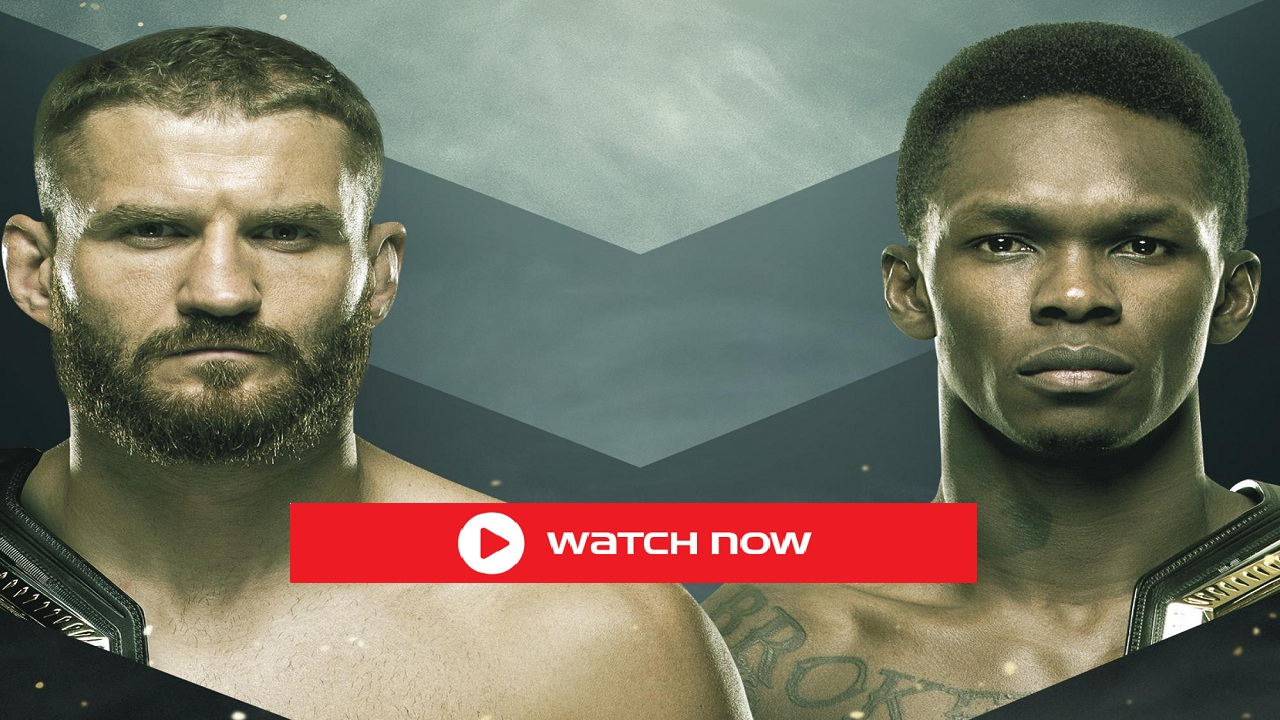 UFC 259 has arrived. Find out how to live stream the exciting UFC match on Reddit and online for free.