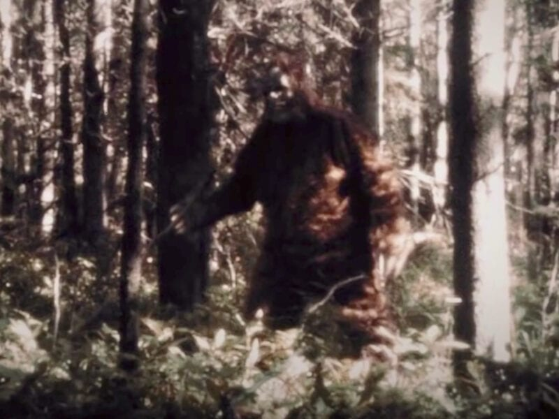 Is Bigfoot a serial killer? Preview the Hulu documentary that follows three grisly murders which could have been done in this hairy cryptid's name.