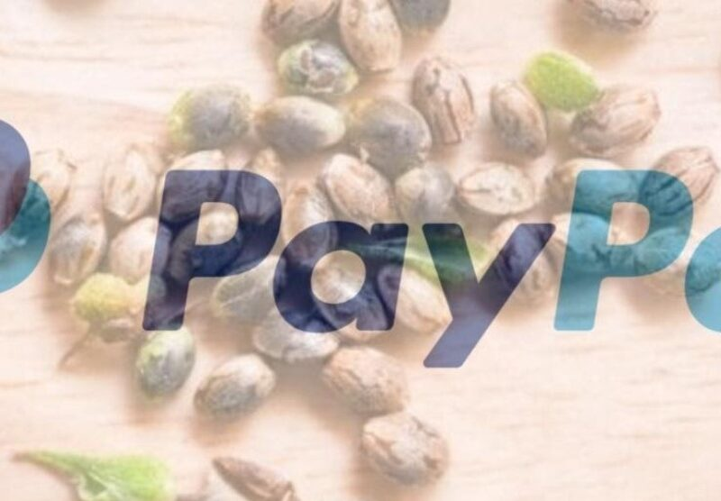 Seed banks are a huge platform. Discover which major seed banks accept PayPal in 2021.