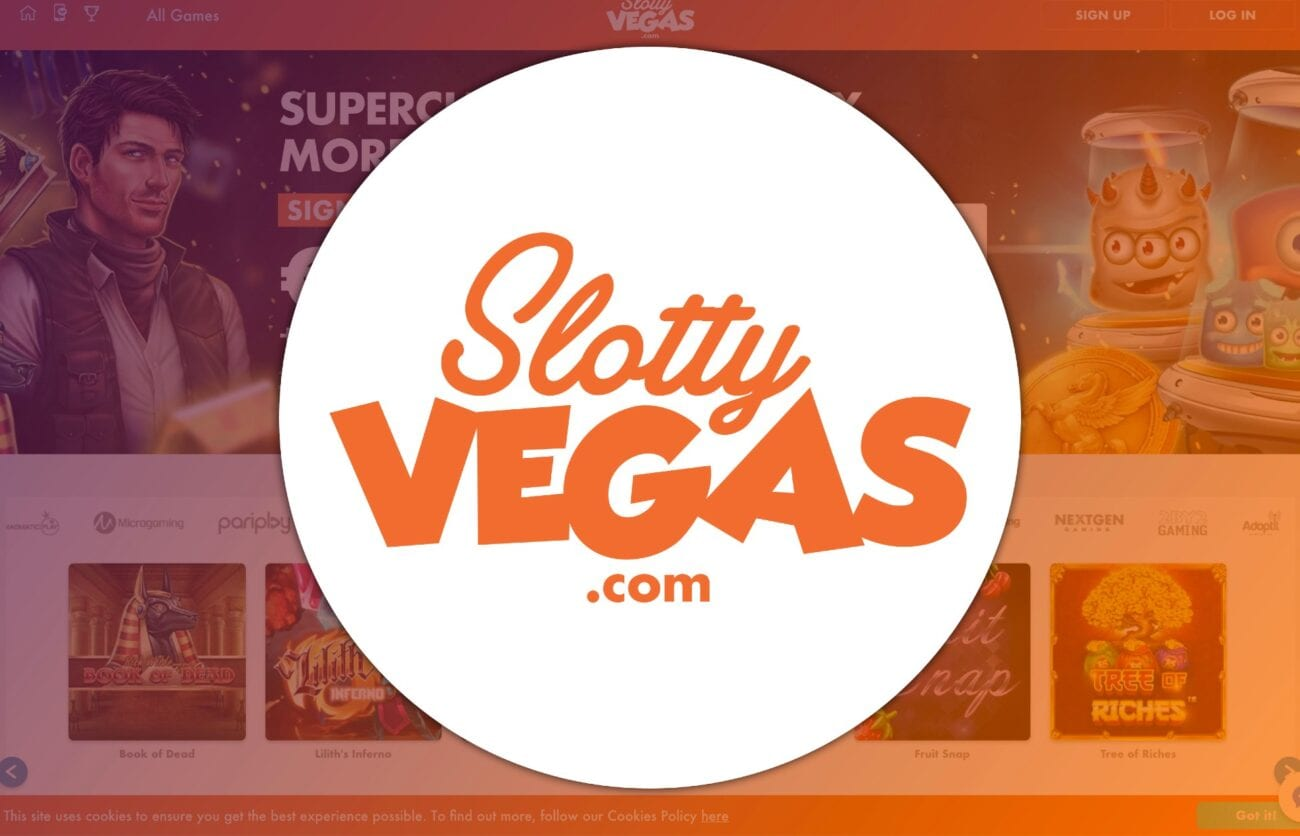 Slot players rejoice! Here's a breakdown of some of the best online slots that you should check out in the Netherlands.