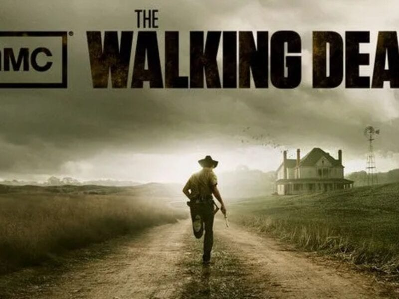 "Luckily, there are a few awesome spinoffs to check out instead of mourning the ""death"" of AMC's 'Walking Dead'. Binge these shows now."