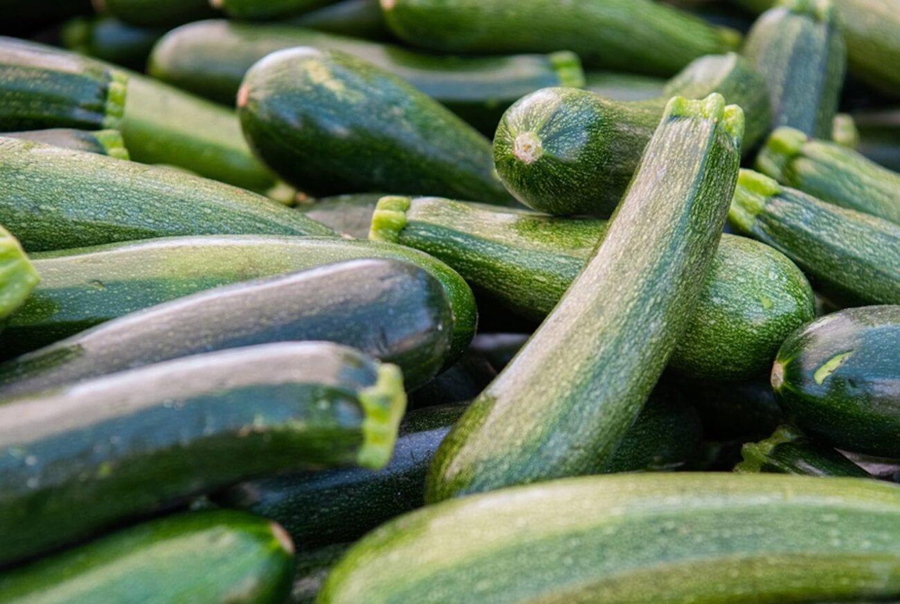 Swimsuit season is right around the corner! If you want to watch your carb intake, cook up these delicious zucchini and squash recipes tonight!