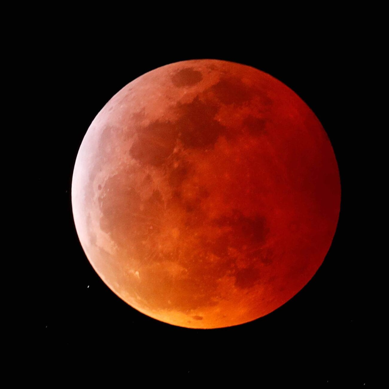 It's a bird – it's a plane – it's a supermoon! Grab your telescopes and dive into the best images of the only total lunar eclipse of 2021.