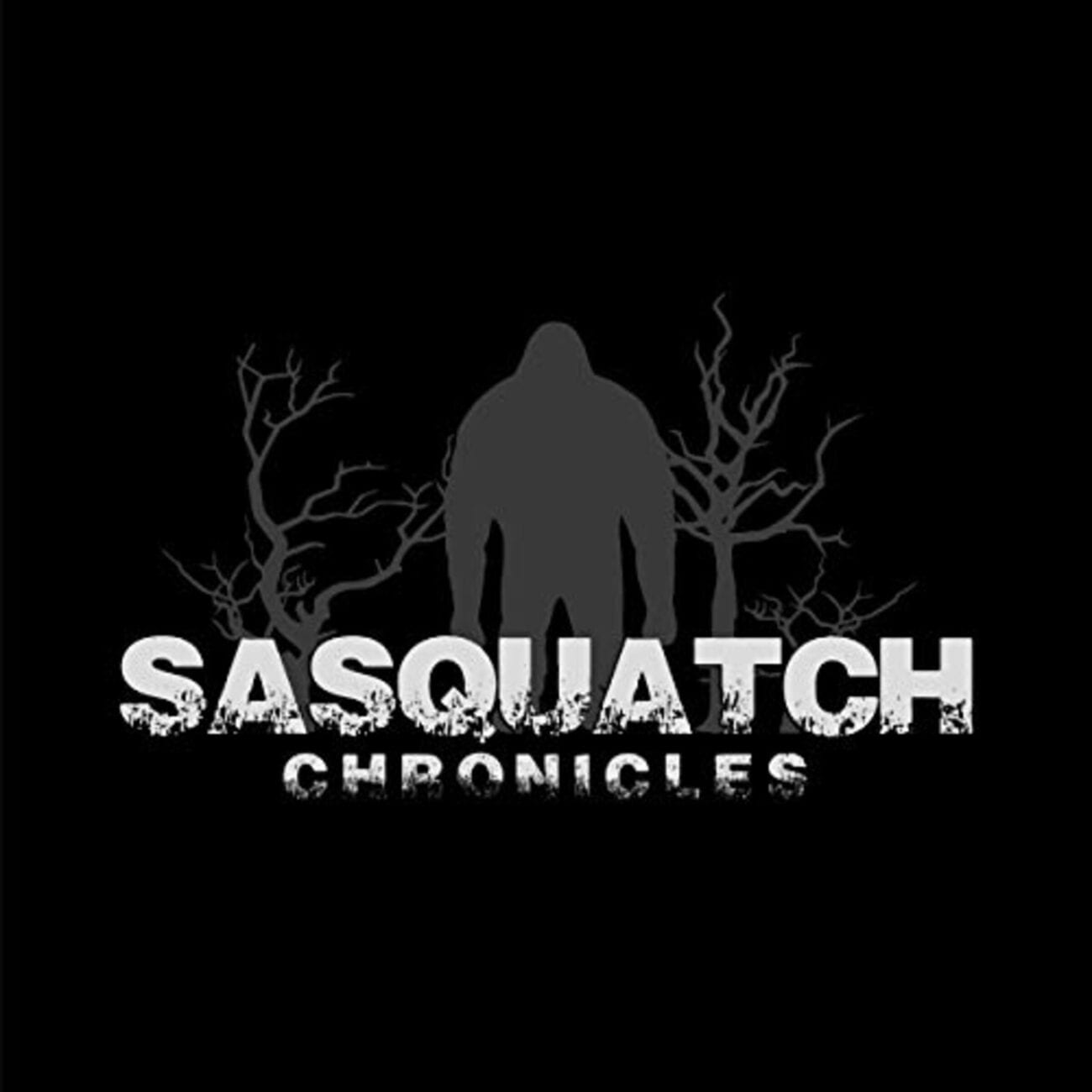 If you're looking for bigfoot and haven't visited the Sasquatch Chronicles, you're really missing out. You have to see their craziest stories here!
