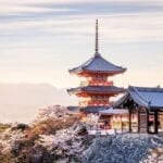 With Japan's increasing popularity, many people are planning their Tokyo travel itinerary. Here are all the scenic cities you should visit.