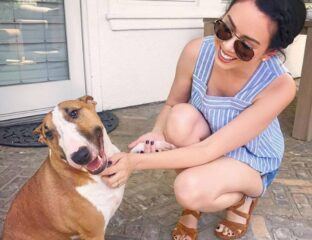 Nikki Phillippi, a lifestyle influencer and YouTuber is currently facing backlash along with her husband Dan Philippi. Why are they losing fans?