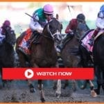 Preakness Stakes 2021 is finally here. Find out how to live stream the horse racing event on Reddit for free.