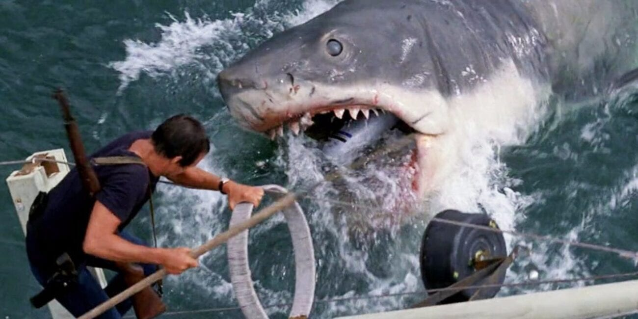 Sometimes, shark attack movies can be a little cheesy, but not all of them! See what critics have to say about these great films.
