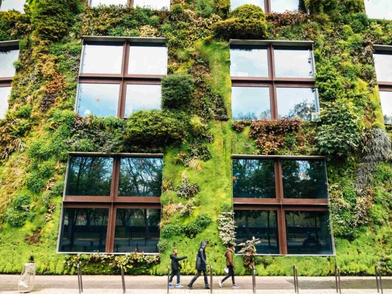 A biophilic design is essential to maintaining good circulation in the house. Learn more about the unique design here.