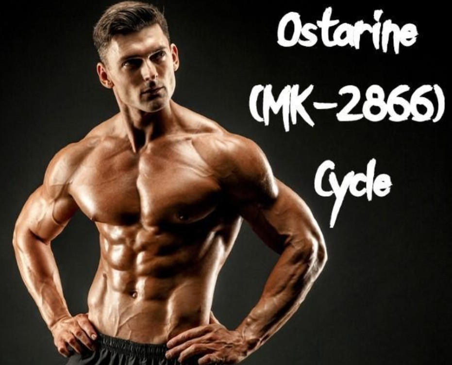 Ostarine is a selective androgen receptor modulator that is marketed by the name EnoboSARM or MK-2866. Check out our reviews here.