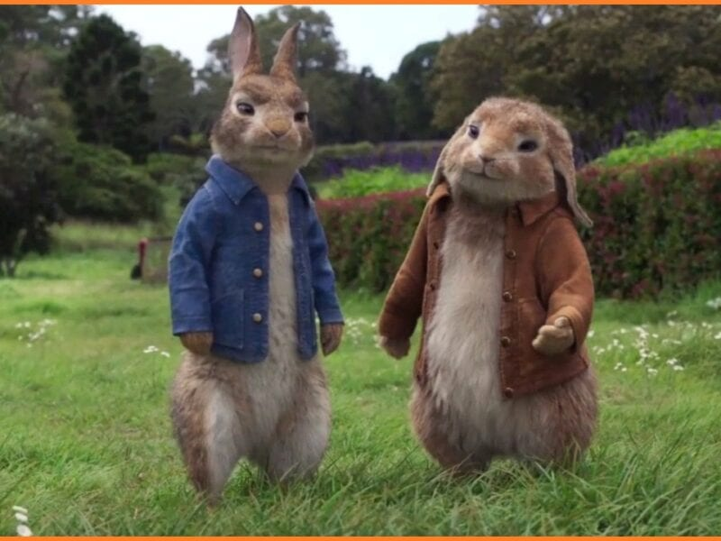 Watch Online free Peter Rabbit 2: The Runaway full Movie: Complete guide on Free Online here.