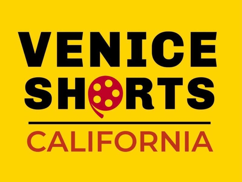 The winners of this month's Venice Shorts competition have finally been revealed. Take a peek at the top talent in the competition.