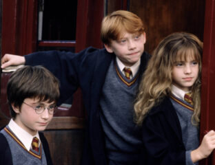 'Harry Potter' may not be getting a reboot any time soon, but we can always dream! Check out our vision for a new film series in the Wizarding World.