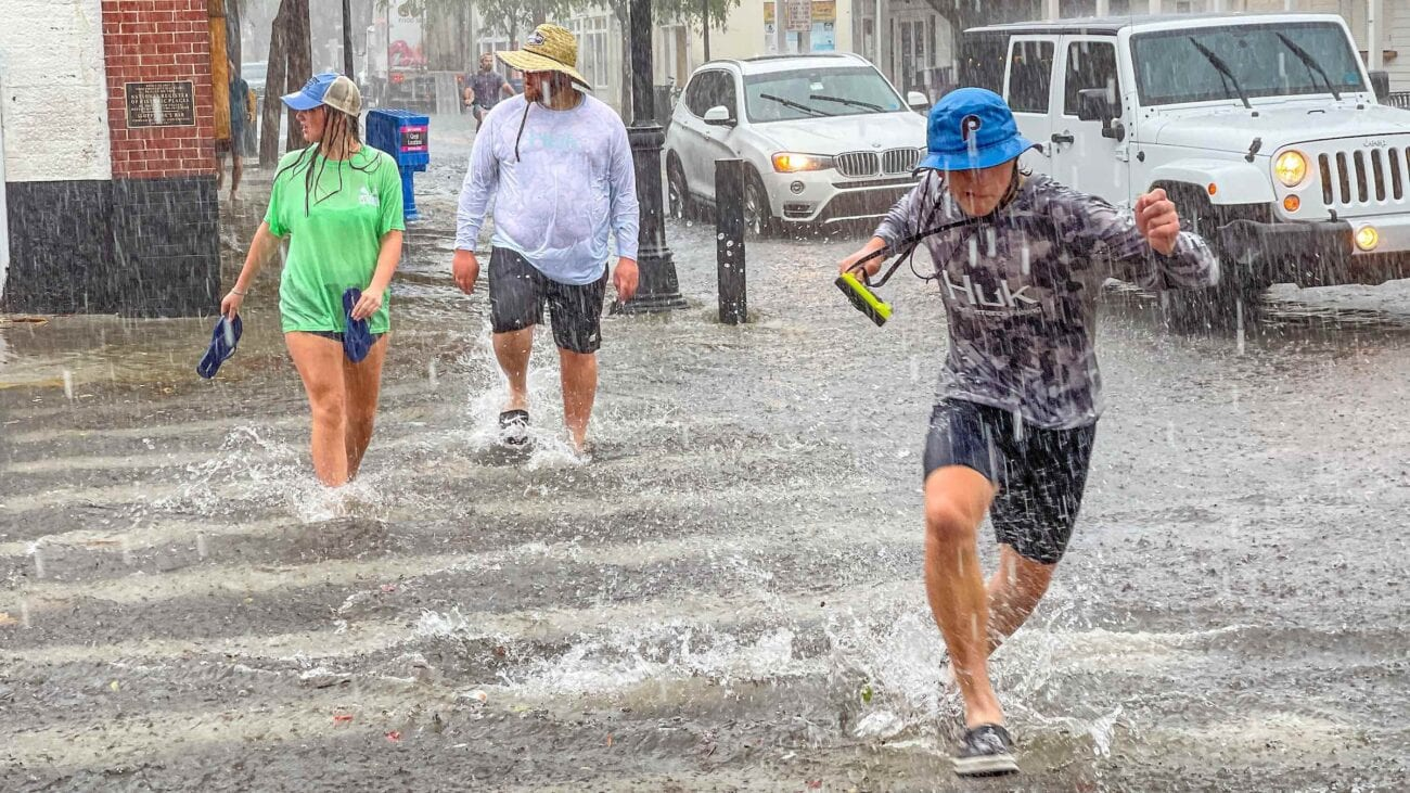Tropical Storm Elsa has made landfall on the Gulf Coast of Florida this morning. Grab your storm essentials and dive into these Twitter reactions.