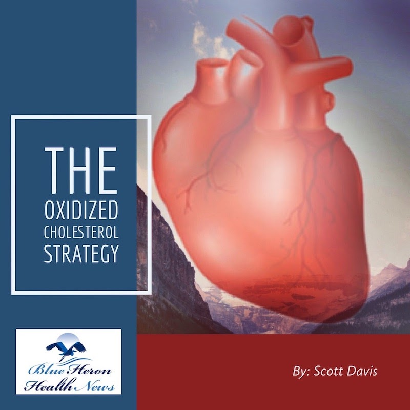 Oxidized Cholesterol Strategy is a product meant to lower cholesterol. Find out if its right for you with this PDF.