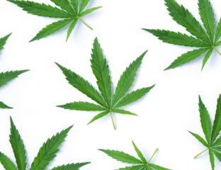 Despite what you were told in school, there are some great benefits to using cannabis. From pain relief to addiction treatment, check them out here!