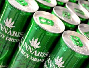Do you know what cannabis energy drinks are? Have you ever had a test of them? Here's everything you need to know.
