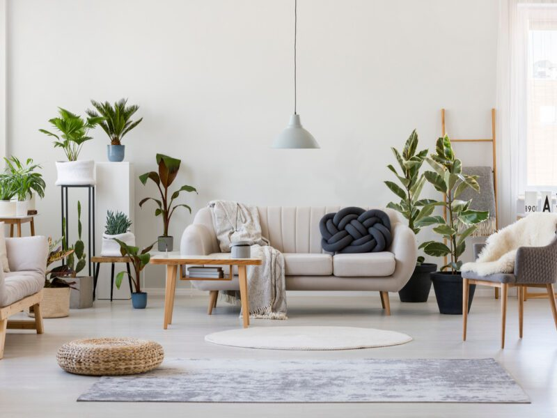 Lifestyle and home stores are more popular than ever these days. Here are some tips on which stores are trending and which deals to look for.