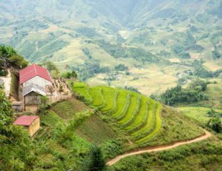 Plan your next trip to one of these beautiful manmade landscapes. From Peru to China, these terrace farms are historical landmarks you need to see!
