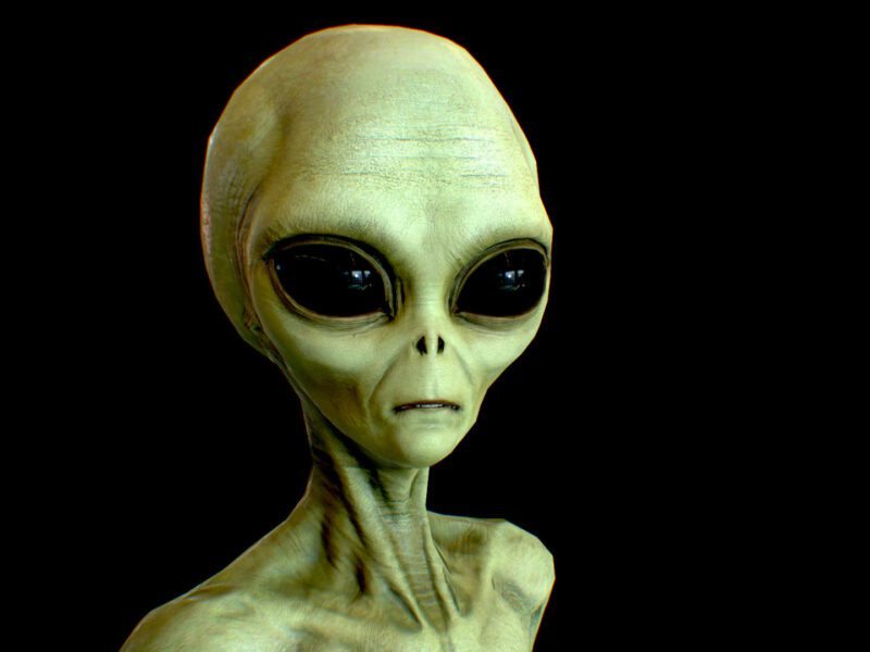 The truth is out there, folks. Beam up into the story and uncover our list of the greatest movies featuring green aliens making contact on Earth.
