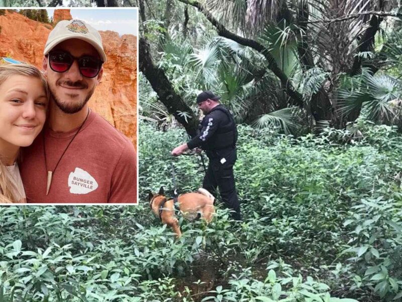 Gabby Petito's fiancé Brian Laundrie has disappeared into Florida's Carlton Reserve. See the latest details as police resume search efforts.