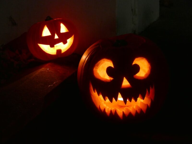 It's time to get creative and fun. We've gathered some funny pumpkin carving ideas perfect for this Halloween season! See these captivating images!