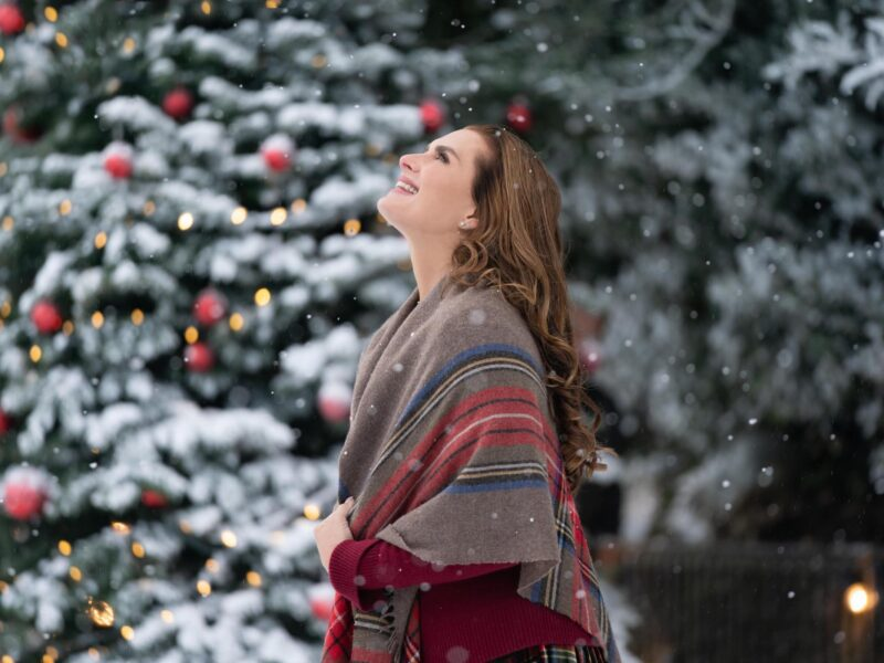 Admit it. You're ready for fun Christmas movies just as much as we are! Check out all the brand new movies Netflix has planned for this holiday season.