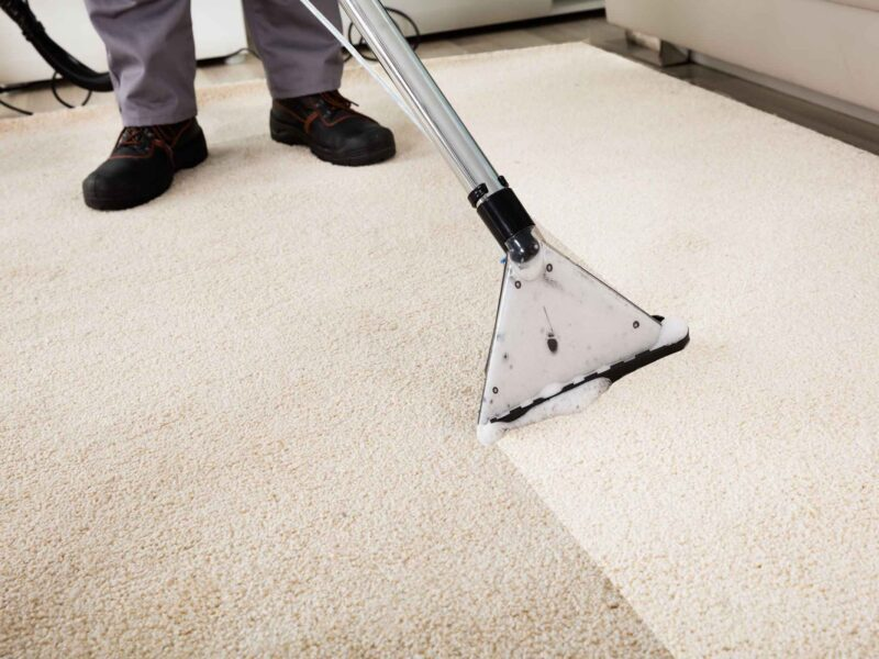 Is your carpet looking dirty and dingy? Learn the facts about the different ways to professionally clean your carpet so it will look good as new!