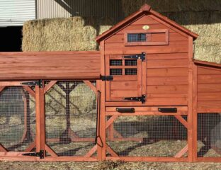 Do you want a new chicken coop but think building one will be too difficult or expensive? Check out these nine easy solutions for your backyard.