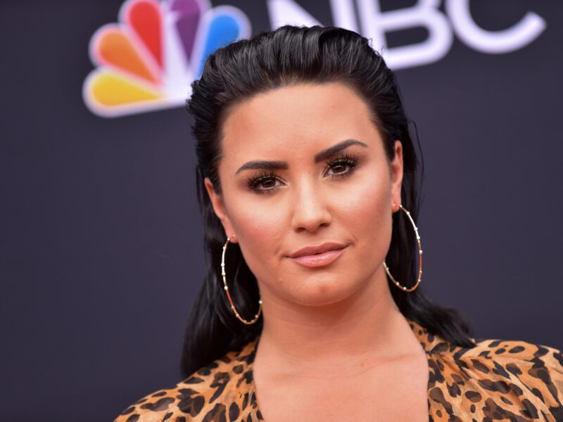 Demi Lovato has certainly explored many entertainment avenues in their career. But how has their history affected their net worth?