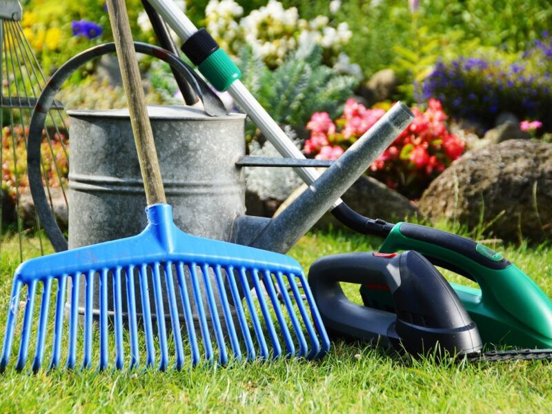 Of course, the problem with online shopping is that there are too many options. Here's all the garden equipment you need.