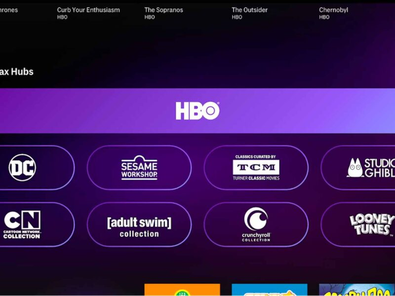 Dying to get the most out of the bingeworth TV on HBO Max? Check out these excellent shows across all genres.