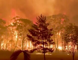 Sandrine Charruyer & Sophie Lepowic outline the climate crisis in Australia with 'Inferno Without Borders'. Get inspired to get involved in the fight.